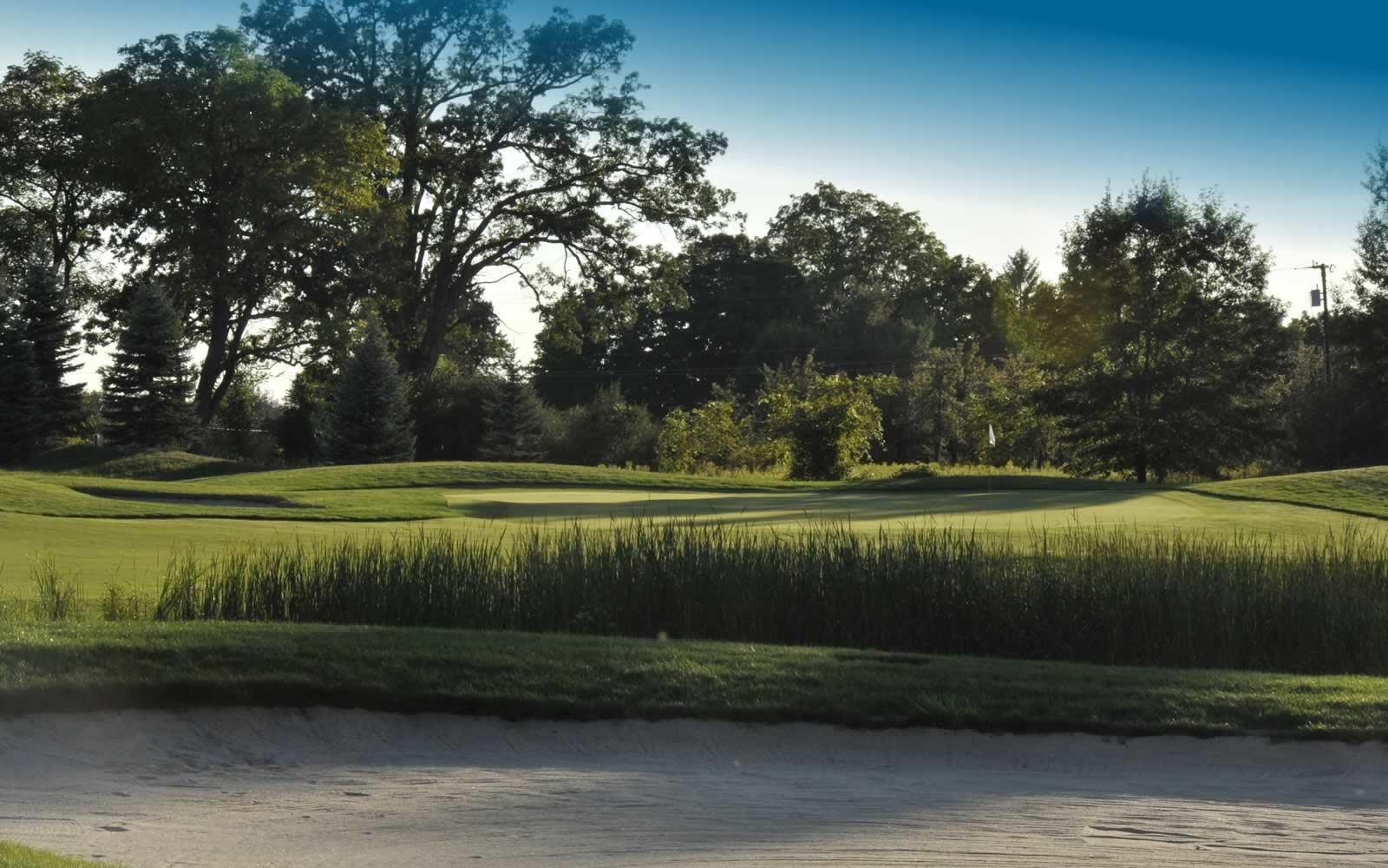 Best Golf Courses In Oakland County