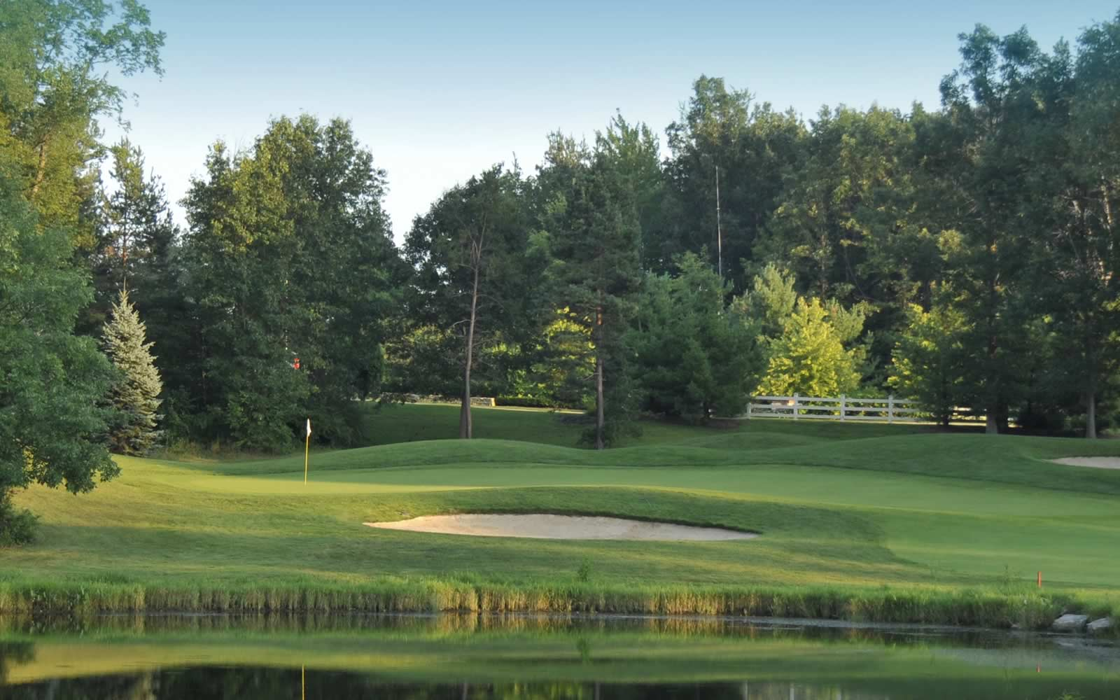 Best Greens In Oakland County