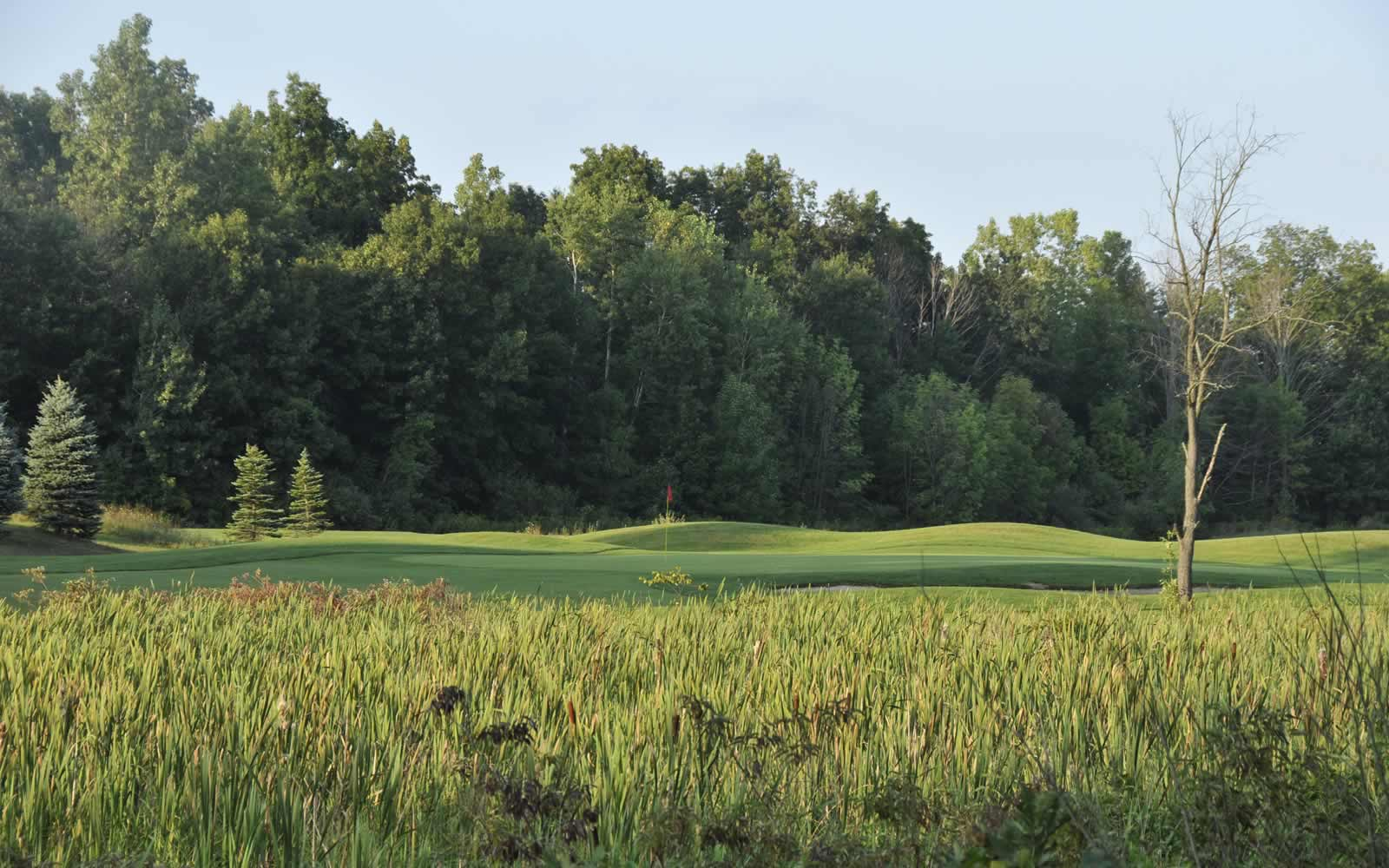 best-golf-courses-in-livingston-county